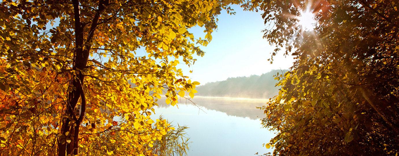 Herbsturlaub: Fürstenseer See am Morgen