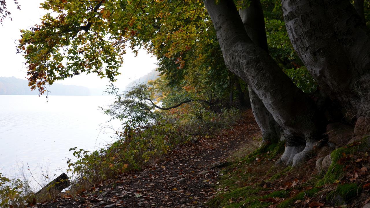 Rundweg Schmaler Luzin, Mecklenburgische Seenplatte